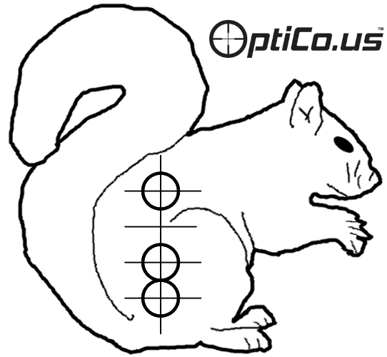 image relating to Printable Squirrel Target named Printable Focus Silhouettes
